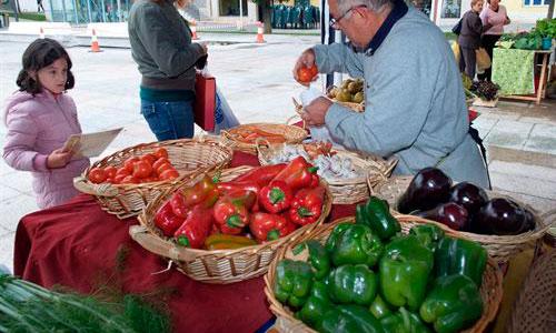 Un estudio muestra que los alimentos biológicos no son mejores para la salud