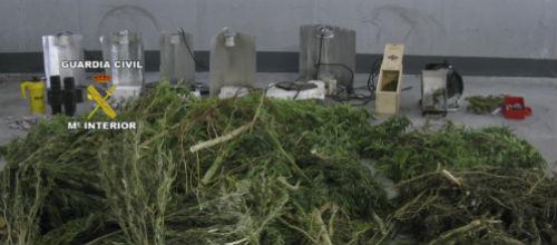 La Guardia Civil incauta 34 kilos de marihuana en Selva