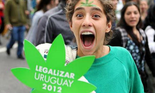 El Gobierno uruguayo vender� 'maria' a 27 euros los 40 gramos