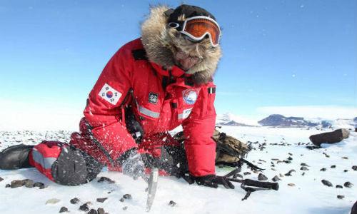 Los científicos buscan trozos de la Luna en la Antártida