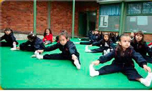 Sanidad propone a Educación implantar una hora diaria de gimnasia