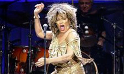 Un aeropuerto usa música de Tina Turner para espantar pájaros