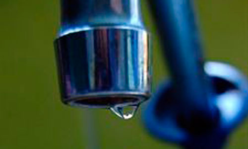 Los pesticidas del agua del grifo pueden provocar alergias a alimentos
