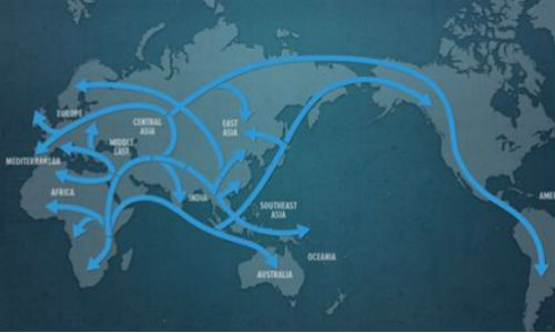 National Geographic ofrece saber si se tienen antepasados neandertales