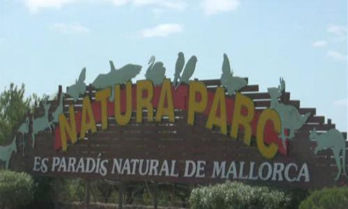Jornada de puertas abiertas en Natura Parc