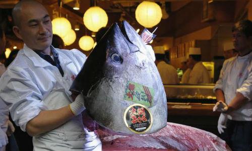 La venta de un atún superó el récord mundial