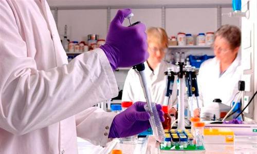 Regeneran células inmunes para combatir enfermedades