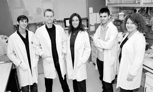 Científicos españoles eliminan tumores de pulmón en ratones