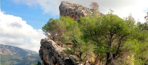 Una roca de grandes dimensiones se precipita junto a Can Penasso