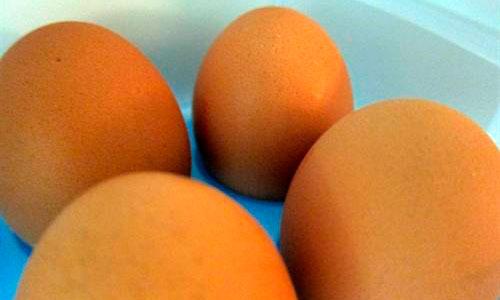 Una proteína de la clara de huevo ayudaría a bajar la presión arterial