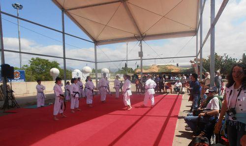 Más de 50.000 personas asisten a la IX Fira de l'Esport