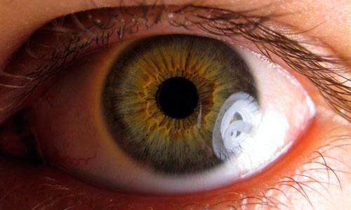 T�cnica novedosa para el estudio de las enfermedades de la retina