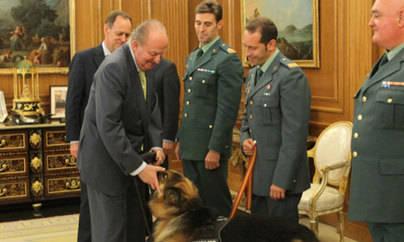 El Rey recibe al perro policía Ajax
