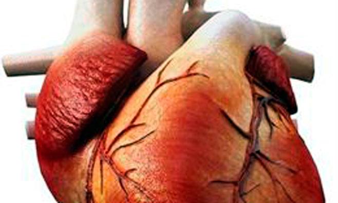 La insuficiencia cardiaca ya afecta al 7% de los mayores de 45 años