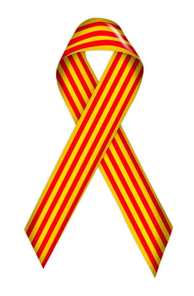 La ley 'antisímbolos' catalanistas, anticonstitucional según el Consultiu