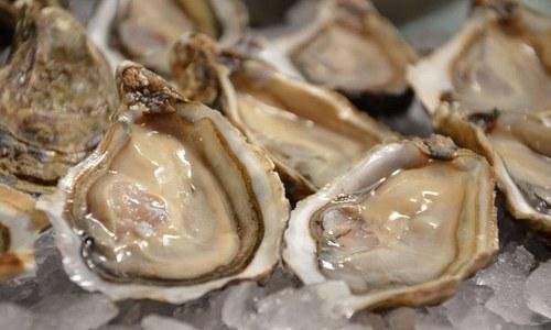 Dormir mucho no engorda más y las ostras no son afrodisíacas