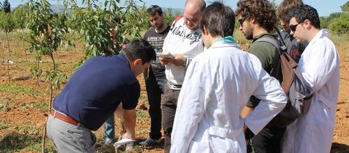 Govern y UIB colaboran en la formación de ingenieros agrícolas