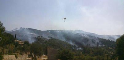 Segundo fin de semana de recuperación forestal en la Serra