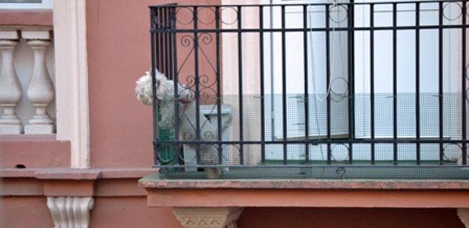 La Policía Local podrá paralizar el ruido generado por los perros