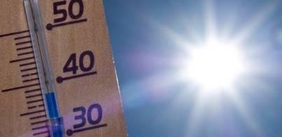 Las altas temperaturas no dan tregua