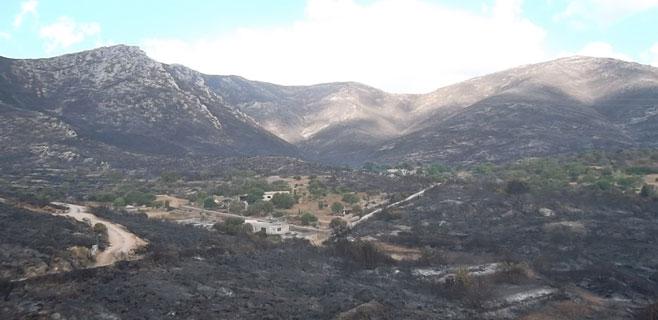 El incendio de Artà y Capdepera queda totalmente extinguido