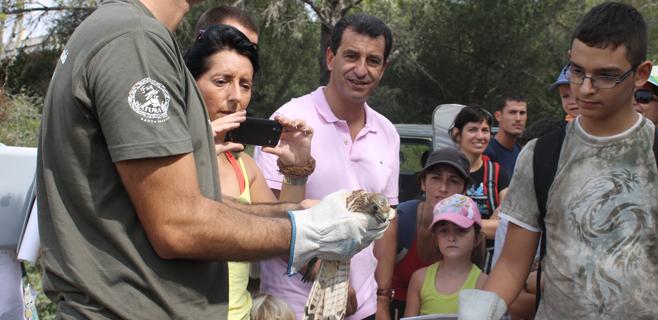 Soltados 29 animales en el Parque Natural de Mondragó