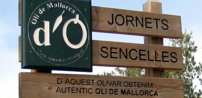 Oli d´Mallorca aplaude la prohibición de las aceiteras rellenables en enero