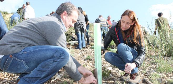 30 voluntarios participan en la reforestación de Peguera