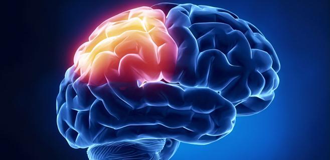 La demencia será el primer problema sanitario en 40 años