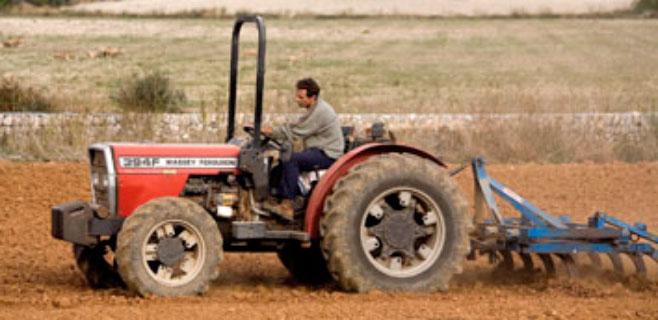 El Govern destina 430.000 euros a ayudas para jóvenes del sector agrario