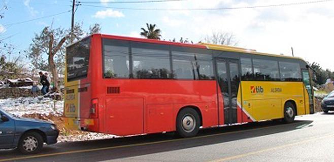 Más frecuencias de autobús entre Palma y Cala Rajada y Son Servera