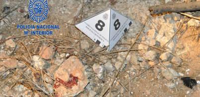 Detenido por dar una paliza a un hombre en un descampado de Palma