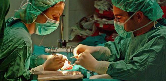 España bate un nuevo récord con 45 trasplantes en un día