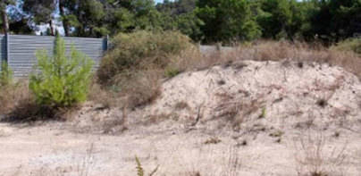 Paralizadas las obras en las dunas de Camp de Mar