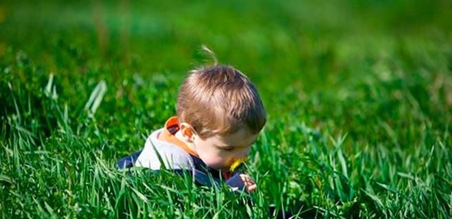 El olfato humano distingue más de un billón de olores