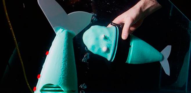 Construído el primer pez robot blando