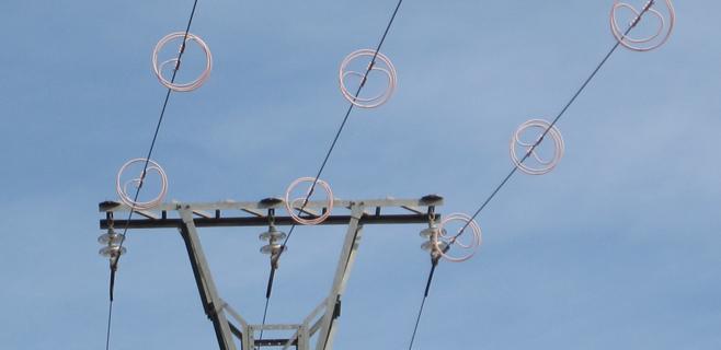 Proteccion avifauna lineas electricas