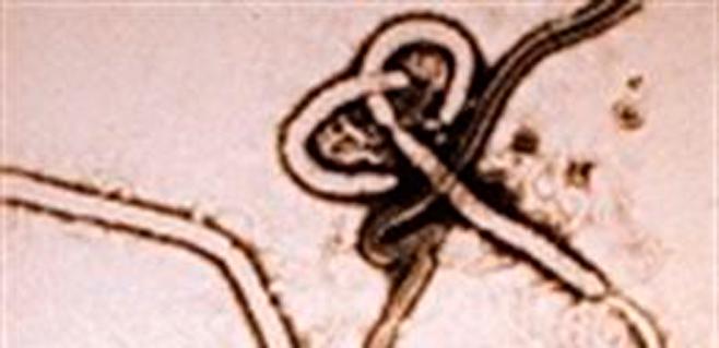 El brote de ébola alcanza una