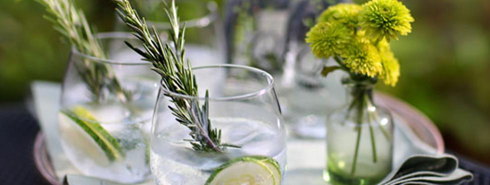 Un día especial para el gin tonic