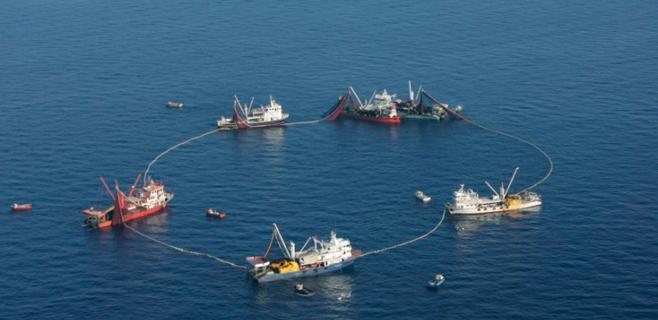 Empieza la temporada de pesca del atún rojo para la flota de cerco balear