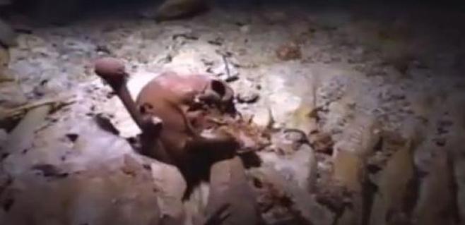 Descubierto el esqueleto del primer americano