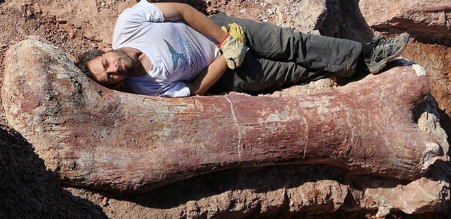 Hallado el dinosaurio más grande nunca descubierto