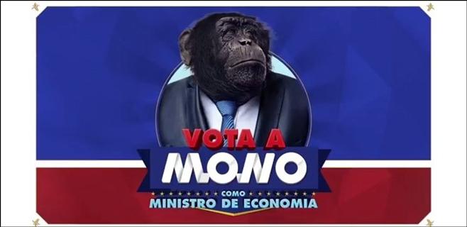 Un mono se presenta a ministro de economía