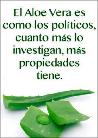 Las propiedades de los políticos y el aloe vera