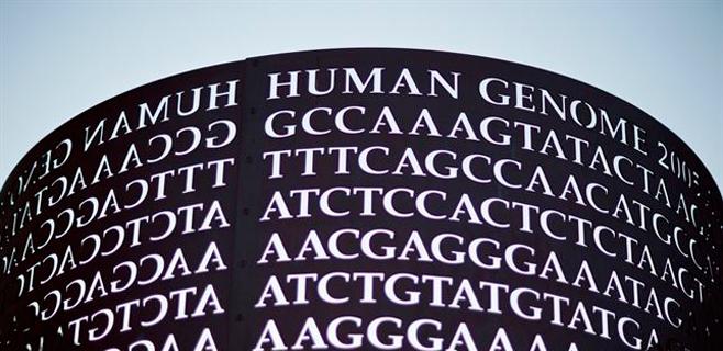 Investigadores españoles actualizan el genoma humano