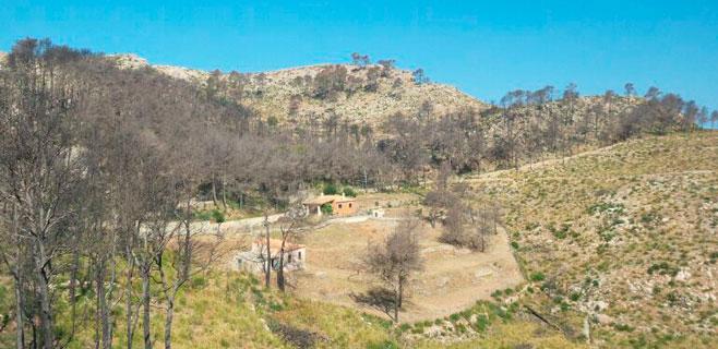 El Govern invertirá 2,1 millones en la prevención de incendios en la Serra