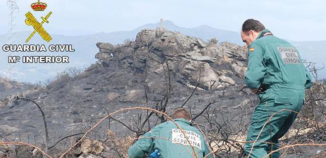 9 imputados y 1 detenido por provocar incendios forestales durante 2014