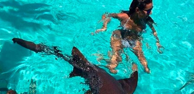 Ana Boyer, entre tiburones