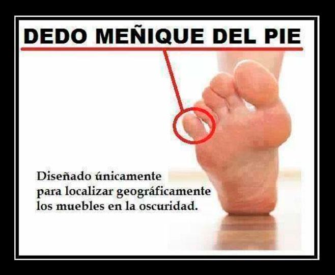 La utilidad del dedo meñique del pie
