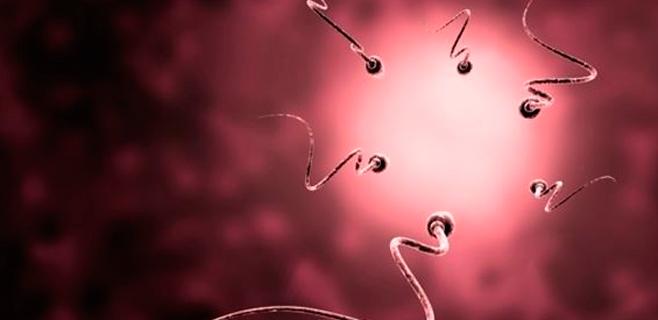 9 de cada 10 vasectomías son reversibles